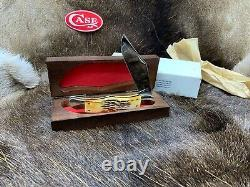 Case 1985 Stag 5165 1/2 Folding Hunter Knife With Wood Display Box Mint