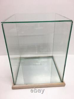 Collector Doll Glass & Mirror White Oak Wood Display Case Fits Up To 10